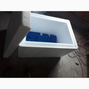Et taşıma kutusu soğuk tutar