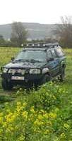Görüntünün olası içeriği: araba, çiçek, bitki, açık hava ve doğa